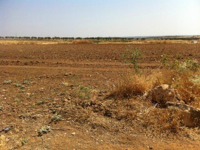 Venta de fincas rusticas chinch n pol 8 parc 264 930m a 1 km de pueblo - Precio vallar terreno ...